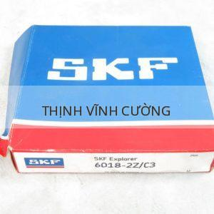 SKF 6018-2ZC3