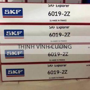SKF 6019-2Z