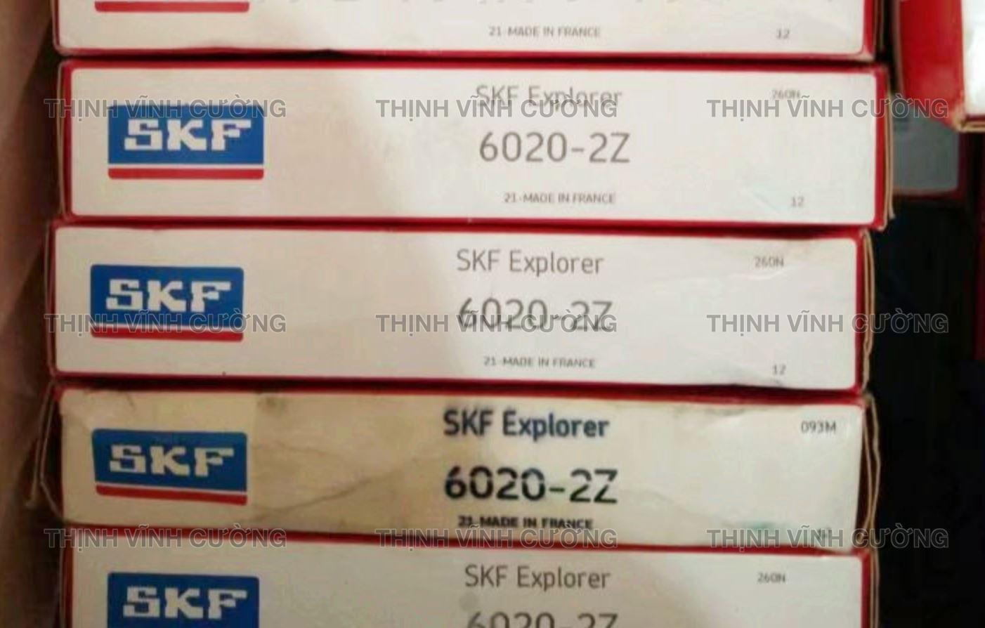 SKF 6020-2Z