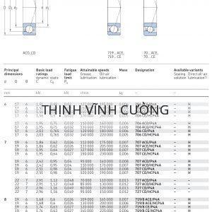 Vòng bi tiếp xúc góc 1 dãy siêu chính xác d 6 - 8 mm 706 707 727 719/8 708 Catalog